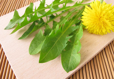 dandelion leaves on a board