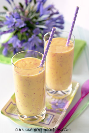 ... nectarine yogurt smoothie recipes dishmaps nectarine yogurt smoothie