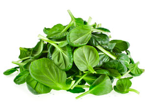 baby loose leaf spinach