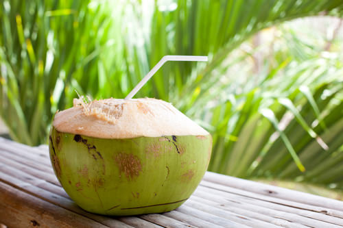 a young coconut ready to drink